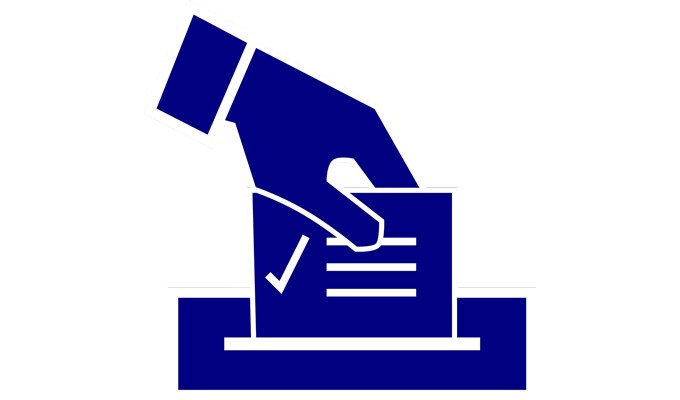Voting for AES 2020 Election Open Through July 3rd