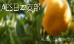 AES Japan